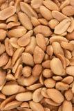 saltade jordnötter Arkivbild