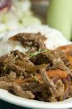 Saltado Peruviaans lapje vlees van Lomo stock foto's