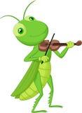 Saltamontes de la historieta con un violín Imagen de archivo libre de regalías