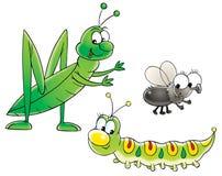 Saltamontes, oruga y mosca Fotografía de archivo