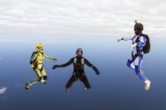Saltando em queda livre a foto. foto de stock royalty free