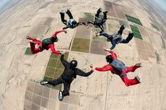 Saltando em queda livre o trabalho da equipe dos povos Foto de Stock Royalty Free