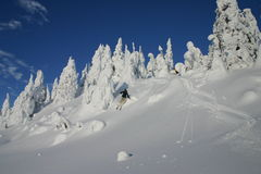 Saltando nella neve Fotografie Stock