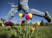 Saltando sopra i tulipani Immagine Stock Libera da Diritti