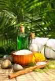 saltar nödvändiga oljor för bad Arkivfoto
