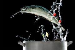 Saltare dei pesci del picchiettio fotografia stock