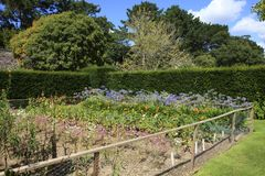 United Kingdom. Saltash (England), UK - August 21, 2015: Cotehele park, near Saltash, Cornwall, England, United Kingdom royalty free stock photos