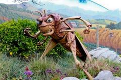Saltatore dell'erba di giro di vita degli insetti Immagine Stock