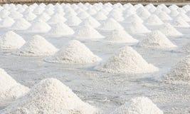 Saltdam Arkivbilder