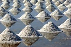 Saltdamm Arkivbild
