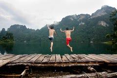 Salte al agua Imagen de archivo