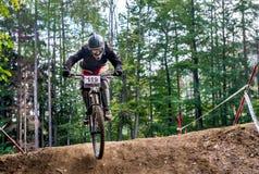 Salte com um Mountain bike Foto de Stock Royalty Free