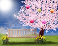 Salte en el pequeño jardín, el cerezo y la floración del narciso en el sofá del jardín Imagen de archivo libre de regalías