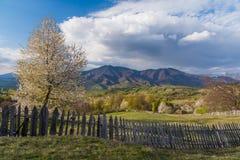 Salte en las colinas de las montañas cárpatas en el lado rumano del país Fotos de archivo