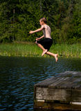 Salte no lago Foto de Stock