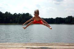Salte no lago Imagens de Stock