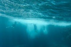 Salte no mar Imagem de Stock Royalty Free