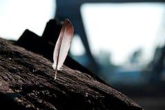 Salte nos feixes de madeira no porto Foto de Stock