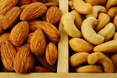 Salted almond and salted cashew Stock Images