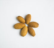 Salted Almond on a white background Stock Photography