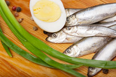 Salted anchovies, egg, and spring onion on wooden Royalty Free Stock Image