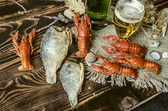 Salted boiled red crayfish with dried salted fish,glass with beer and a bottle of beer. On canvas lying on dark wooden boards Stock Photography