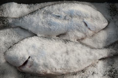 Salted bream Stock Photography