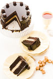 Salted Caramel Truffle Torte Stock Image