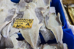 Salted Cod fish Bacalao on the market, Greece. Stock Photos