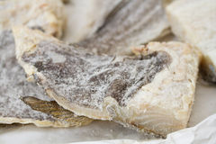 Salted cod fish Stock Images