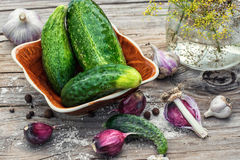Salted cucumber Royalty Free Stock Images