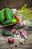 Salted cucumber Stock Photos