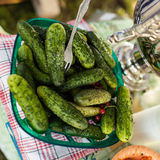 Salted cucumbers in the bowl. Royalty Free Stock Image