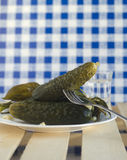 Salted cucumbers Stock Photo