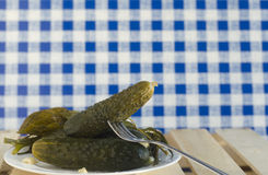 Salted cucumbers Stock Photography