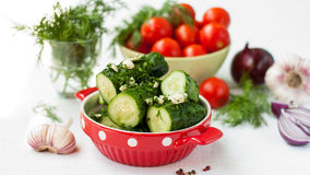 Salted cucumbers Stock Images