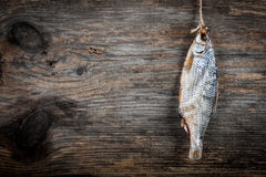 Salted dried fish Royalty Free Stock Photos