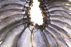 Salted and dried river fish on a white background. Royalty Free Stock Photos