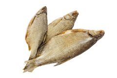 Salted and dried river fish on a white background. Royalty Free Stock Image