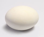 Salted duck egg Royalty Free Stock Image