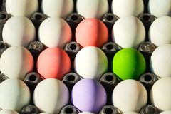 Salted egg/easter eggs/Century egg. stock image