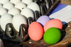 Salted egg/easter eggs/multi color eggs in box. royalty free stock photos