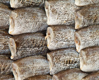 Salted fish. In the market Thailand Royalty Free Stock Image