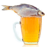 Salted fish on a beer mug Royalty Free Stock Photos