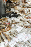 Salted fish and cat Royalty Free Stock Photos