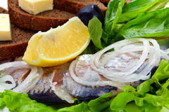 Salted fish closeup Stock Photo