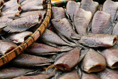 Salted Fish. Salted,dried fish is a common food in Asian countries including Thailand, Malaysia, Singapore and Indonesia Royalty Free Stock Image