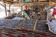 Salted fish Stock Photo