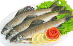 Salted fish - grayling. On a platter with lemon, lettuce and tomato from a rose royalty free stock photo