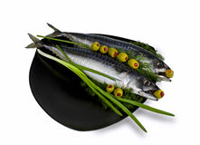 Salted mackerel with olives. Salted fish mackerel decorated with greenery and photographed on a white background Royalty Free Stock Images